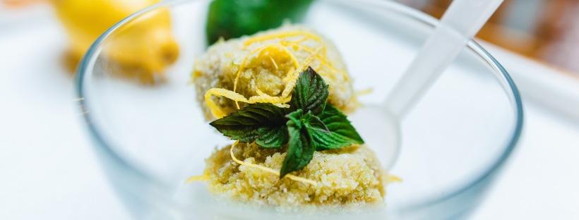 Jasna`s Kreativ-Werkstatt: Avocado Sorbet